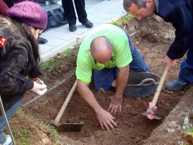 Operarios Durante La Exhumación