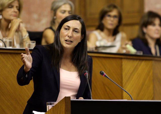 Dolores López, este miércoles ante el Pleno del Parlamento