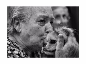 Fotografía de la muestra El Gesto como terapia. Fotografías de Antonio Molina