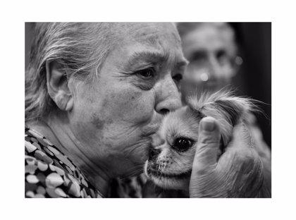 Un centro de Madrid expondrá fotografías de enfermos de Palma
