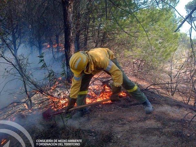 Efectivos del Infoca en el incendio declarado en Cartaya (Huelva)