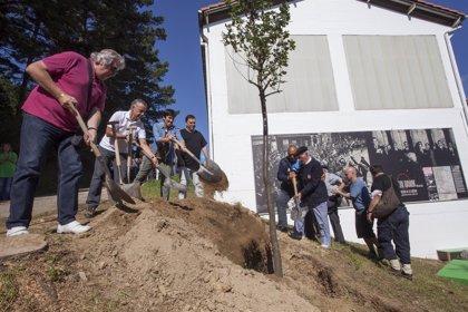 Gobierno vasco presentará un programa de prioridades de Memoria Histórica