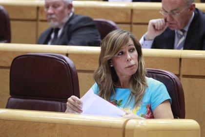 PP urge la comisión de investigación tras la imputación de dos hermanos de Puig por blanqueo en negocios con Pujol