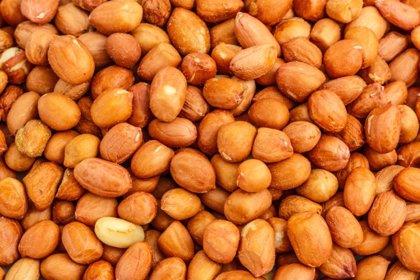 El cacahuete tostado, más alérgeno que el crudo