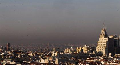 La contaminación atmosférica puede aumentar el riesgo de asma por polen