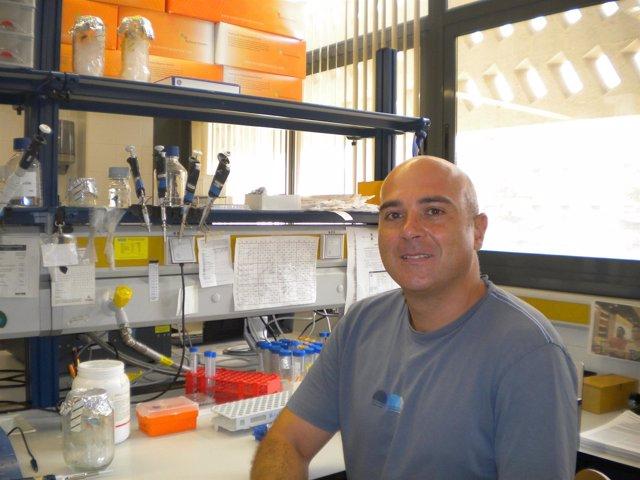 El investigador Francesc Soriano