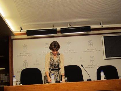 """El PP asturiano defiende que la reforma """"requería el máximo consenso"""""""