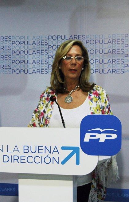 """El PP critica que la Junta """"obliga"""" a los profesores a utilizar en este curso textos antiguos en la FP Básica"""