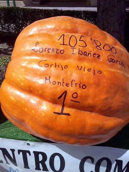 Una calabaza de más de 105 kilos, la más grande de Andalucía
