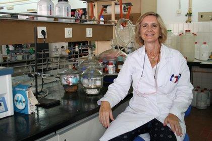 Expertos de la US estudian el uso de tensioactivos en procesos de transfección génica
