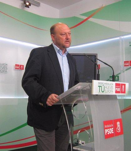 """El PSOE celebra que el TC admita a tramite el recurso contra la """"aberración"""" del macrodecreto de julio"""