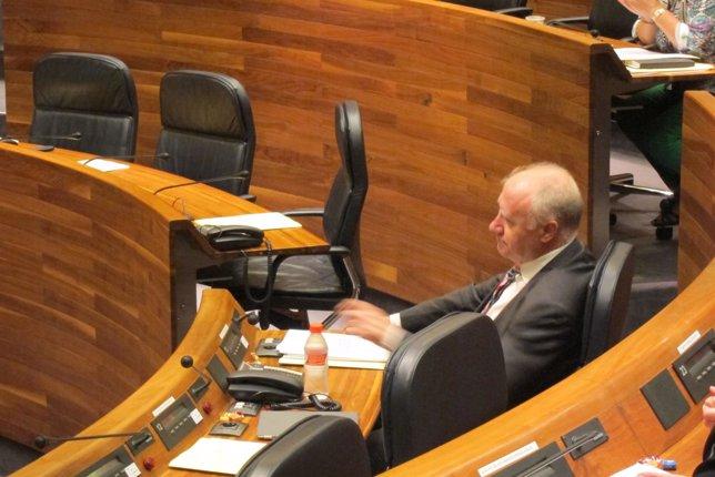 Faustino Blanco, consejero de Sanidad, en la Junta General