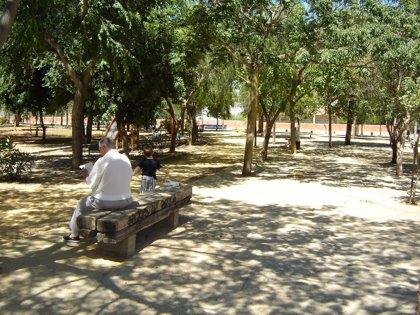 Sevilla.-Supera.-Carmona ultima el inicio de la inversión en plazas, parques y juegos infantiles, por 70.000 euros