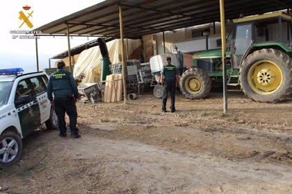 Siete detenidos de dos grupos especializados en robar en explotaciones agrícolas y ganaderas