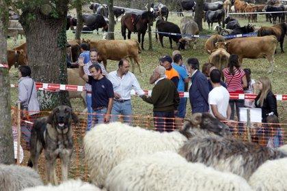 Martínez dice que Cantabria afronta con garantías el fin de la cuota láctea