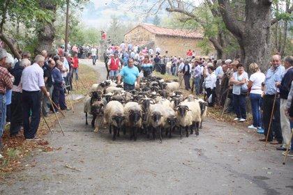Récord de participación en la feria de Alceda, con 1.400 reses