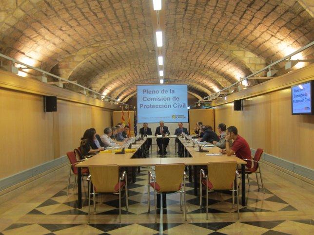 Pleno de la Comisión de Protección Civil.