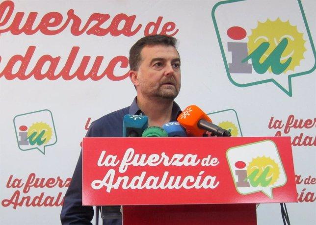 Antonio Maíllo, coordinador general de IULV-CA.