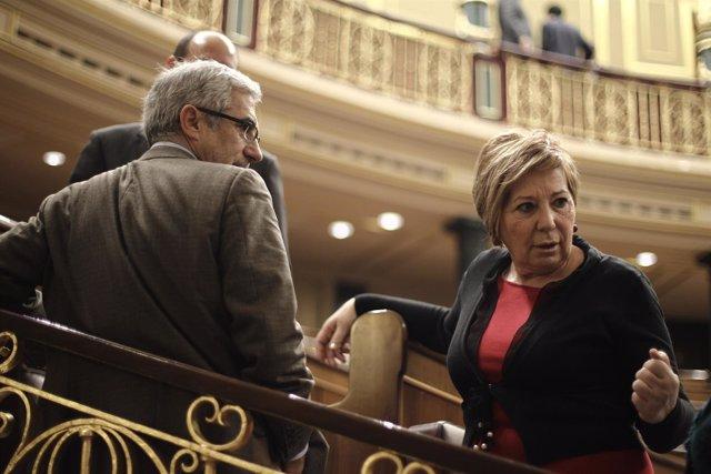 Celia Villalobos y Gaspar Llamazares en el Congreso