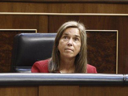 IU-ICV-CHA promueve esta semana una votación en el Congreso para destituir a Mato tras el adiós de Gallardón
