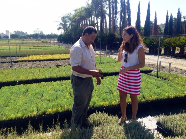 Marina Bravo, vivero, plantas, diputación, reforestar
