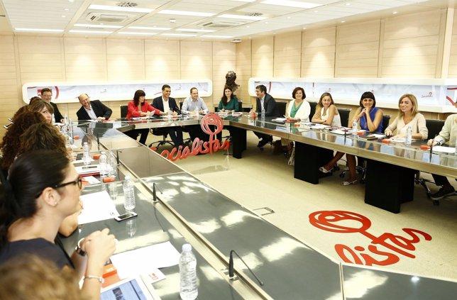 Pedro Sánchez en la Comisión  Permanente del la Ejecutiva Federal del PSOE
