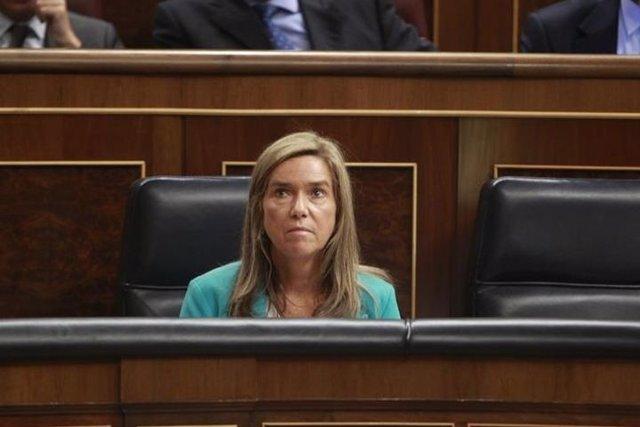 Mato se reunirá con las CCAA por el caso de ébola