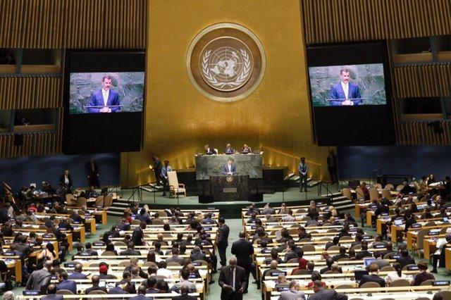El Rey Felipe VI, en la ONU