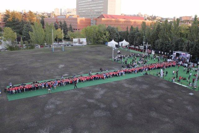 Record de la melé de rugby más grande del mundo con 1088 personas.