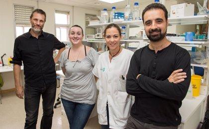 Investigadores de Parapléjicos muestran sus avances en protección celular en el foro científico internacional EMBO