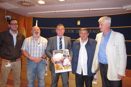 Las XI Jornadas Micológicas de San Martín celebrarán 18 actividades