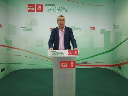 El PSOE cierra sus primarias con la elección de Concepción Ufano en Coria y David García en Écija