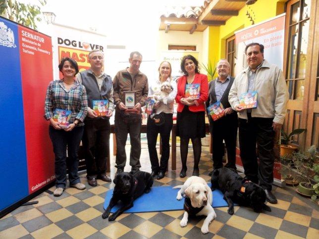 Guía para viajar con mascotas en Chile