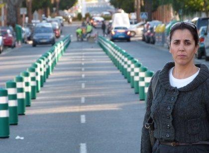 """Los costes de la """"chapuza"""" de carril bici de Alcalá superan los 120.000 euros, según el PA"""