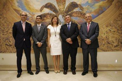 El Misteri d'Elx dsigna a los rectores de la UMH, UA y UPV como electos para la representación extraordinaria