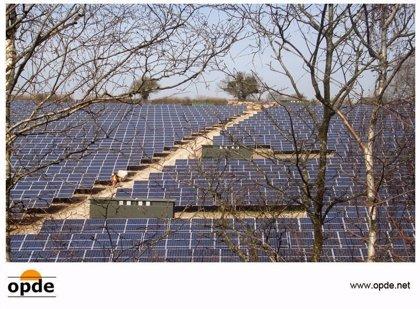 Economía/Empresas.- Opde supera los 50 MW fotovoltaicos en Reino Unido