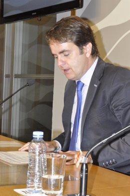 Roberto Bermúdez de Castro, consejero aragonés de Presidencia.