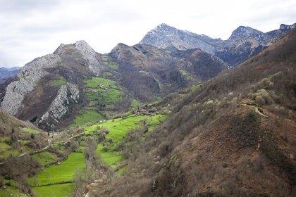 """Ecologistas reprochan al Principado de Asturias su """"falta de sensibilidad ambiental"""" con los Parques Naturales"""