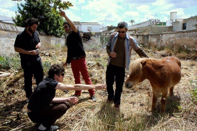 Los sevillanos Pony Bravo