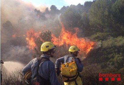 El incendio de Roses quema 46 hectáreas de vegetación