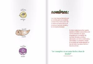 'Monografía Incomprendida': Nombres