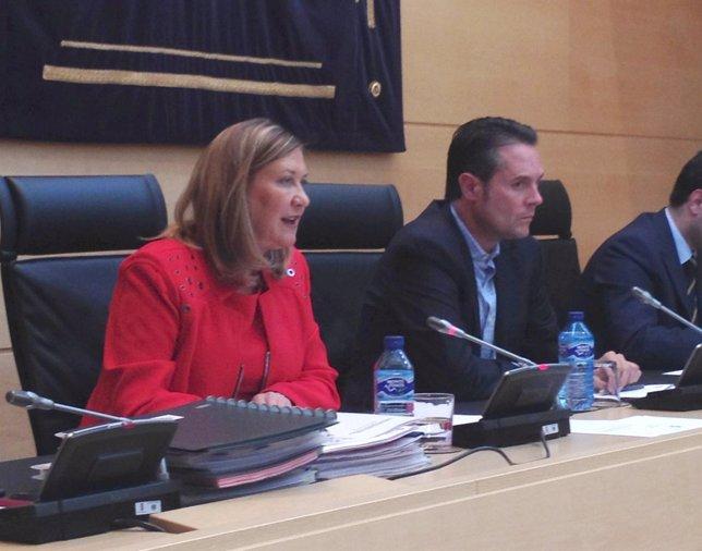 Pilar del Olmo comparece en las Cortes