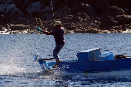 Los emprendedores agrícolas, pesqueros y acuícolas se incluyen en las ayudas al empleo autónomo