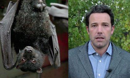 VIDEO: Batman v Superman quiere salvar a los murciélagos