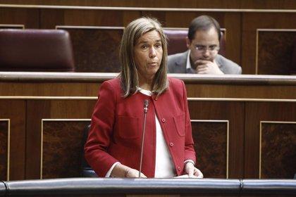 El PP rechaza pedir al Gobierno el cese de Mato por su gestión