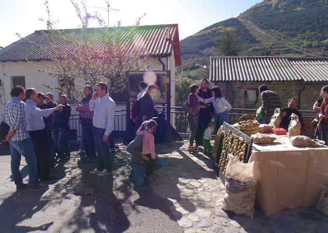 La III Feria de la Patata potencia el cultivo del tubérculo.