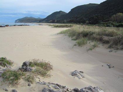 Noja.- DeSEO Descubrir recorre hoy las dunas y campiñas de Trengandín