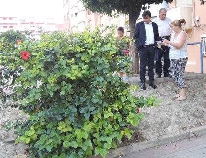 PSOE urge a Rodríguez a reforzar la limpieza en la calle Gonzalo de Berceo por la presencia de ratas