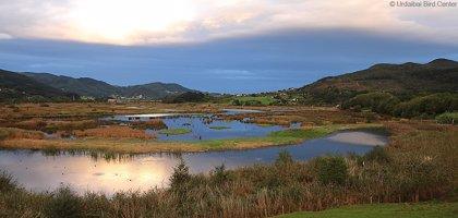 Los Parques Naturales de Bizkaia ofrecen jornadas y actividades