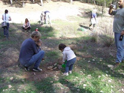 Quince familias plantan pinos en El Valle dentro de la actividad 'Tener un hijo y plantar un árbol'